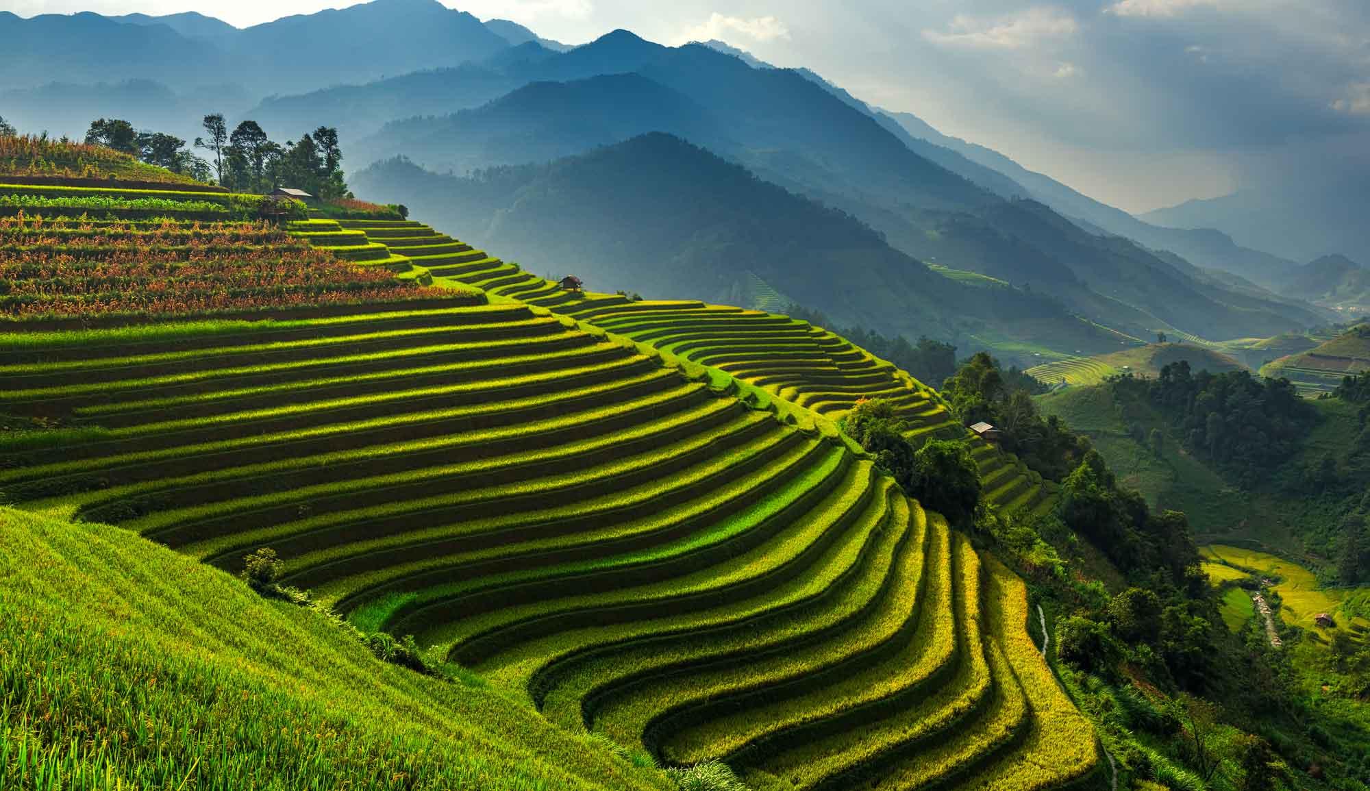 images-du-vietnam-chez-hung-04.jpg