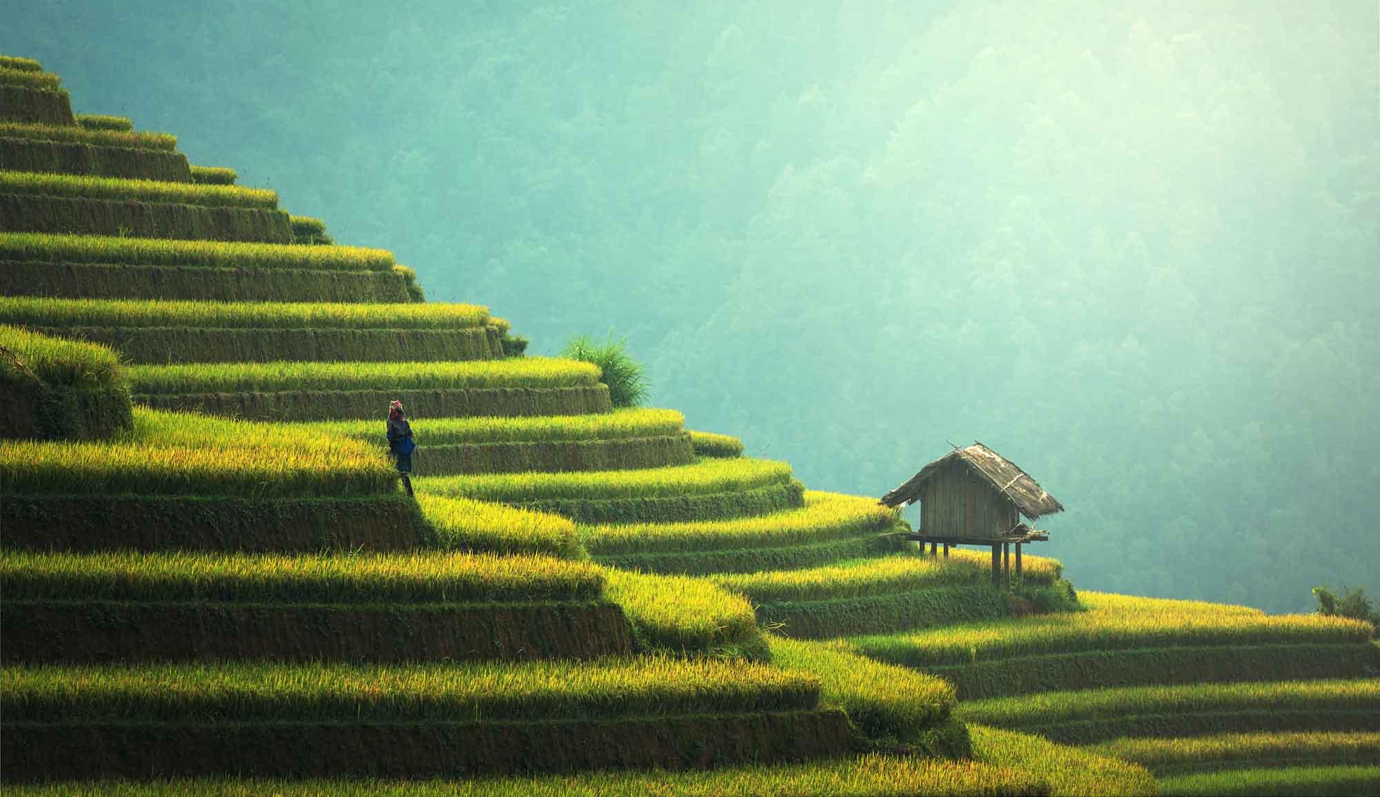 images-du-vietnam-chez-hung-08.jpg